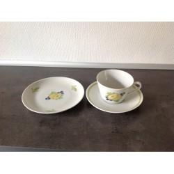 Lyngby Picnic Tekop med underkop og dessert tallerken